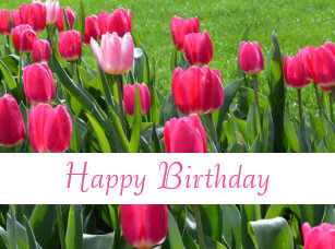 Happy Birthday Spring Flowers Home Decor Furnishings Pet Supplies