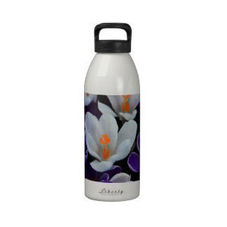 Gorgeous Spring Tulips Drinking Bottle