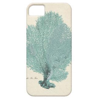 Gorgeous Turquoise Aqua Pacific Sea Fan iPhone 5 Covers