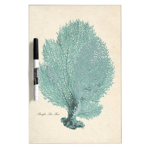 Gorgeous Turquoise/Aqua Pacific Sea Fan Dry-Erase Whiteboards