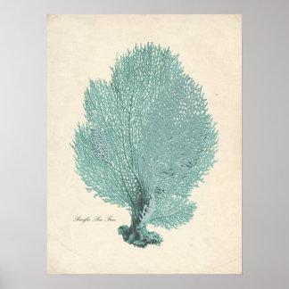 Gorgeous Turquoise/Aqua Pacific Sea Fan Poster