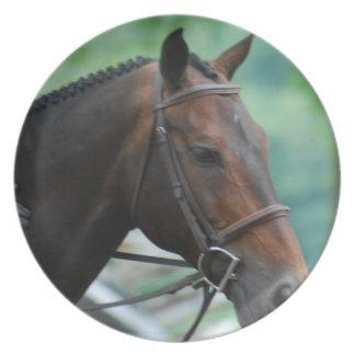 Gorgeous Warmblood Horse  Plate