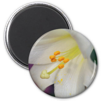 Gorgeous While Lily 2 Inch Round Magnet