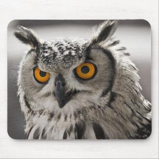 Gorgeous White Owl Mousepad