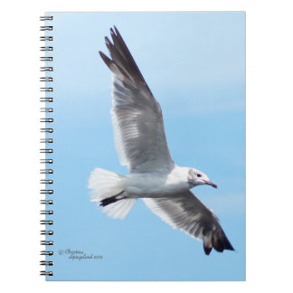 Gorgeous White Seagull Flying Notebook