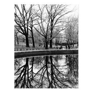 Gorgeous Winter Landscape in Central Park Postcard