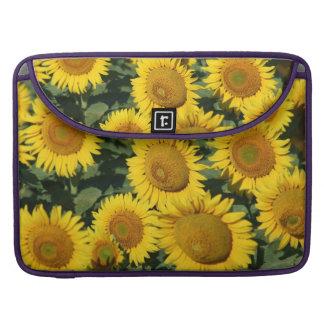 "Gorgeous Yellow Sunflowers 15"" Macbook Pro Sleeve"