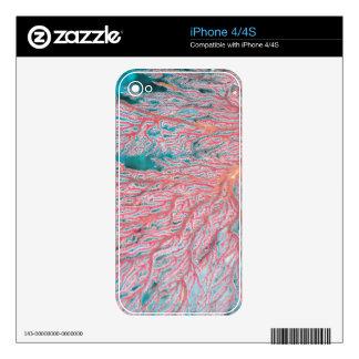 Gorgonian coral 3 iPhone 4 skin