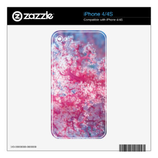 Gorgonian coral iPhone 4 decal