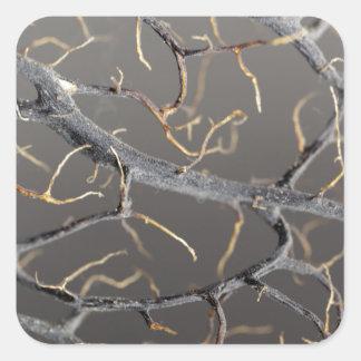 Gorgonian coral square sticker