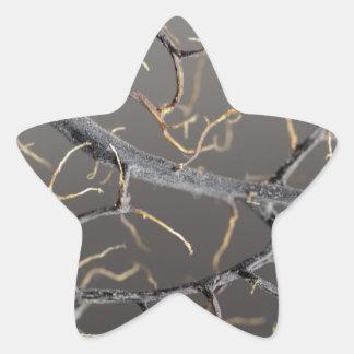 Gorgonian coral star sticker