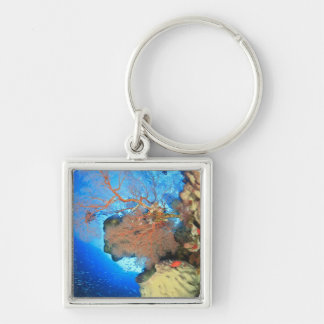 Gorgonian sea fans, Gunung Api Island, Banda Keychain