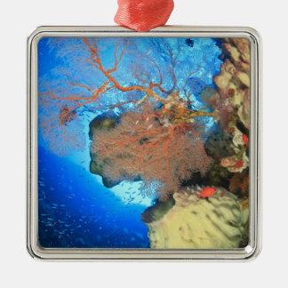 Gorgonian sea fans, Gunung Api Island, Banda Metal Ornament
