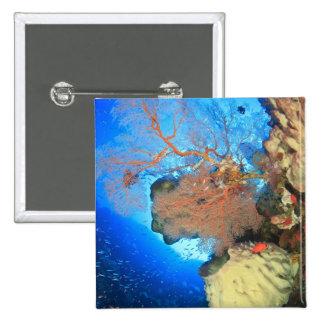 Gorgonian sea fans, Gunung Api Island, Banda Pinback Button