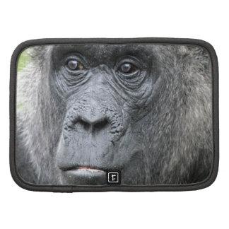 Gorila 004 planificador