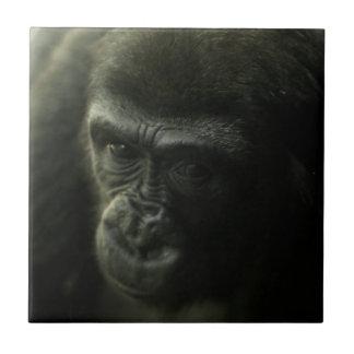 Gorila Closeup.png Azulejo Cuadrado Pequeño