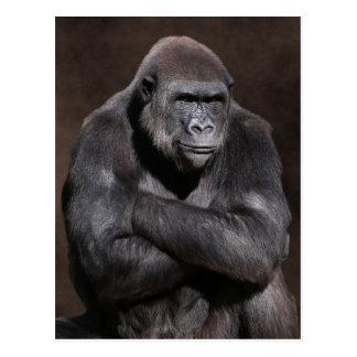 Gorila con actitud tarjetas postales