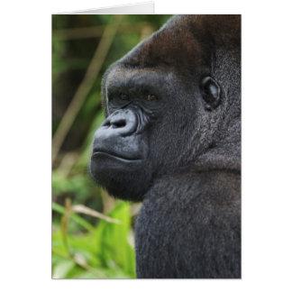 Gorila de la tierra baja del Silverback, cautivo d Tarjeta De Felicitación