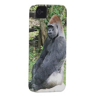 Gorila de la tierra baja en actitud que se sienta