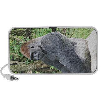Gorila de la tierra baja en actitud que se sienta notebook altavoces
