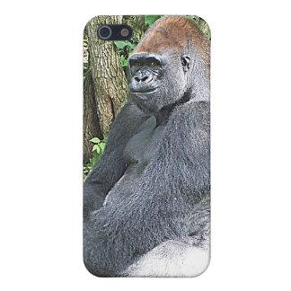 Gorila de la tierra baja en actitud que se sienta iPhone 5 fundas