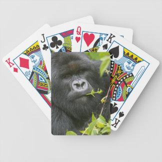 Gorila de montaña del Silverback Barajas De Cartas