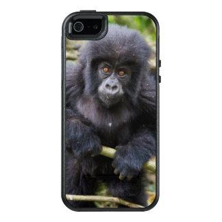 Gorila de montaña (gorila Beringei Beringei) Funda Otterbox Para iPhone 5/5s/SE