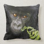 Gorila de montaña juvenil almohadas