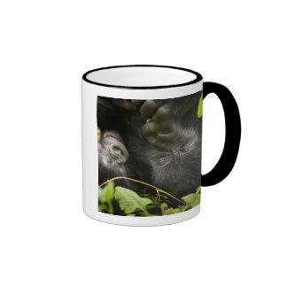 Gorila de montaña juvenil y su madre taza de dos colores