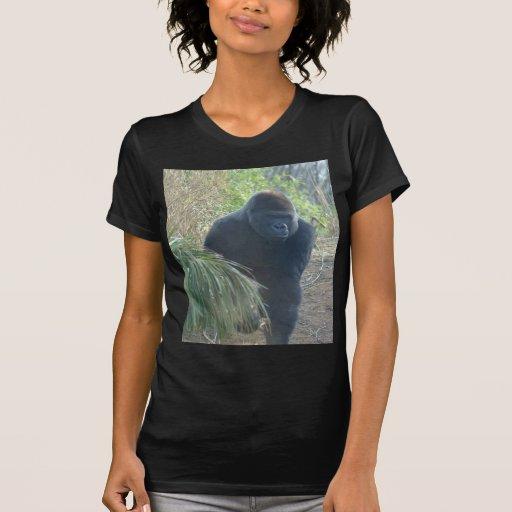 Gorila de montaña magnífico camisetas