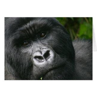 Gorila de montaña felicitacion