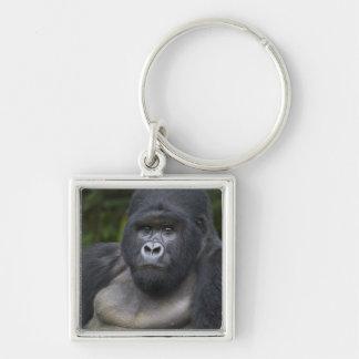 Gorila de montaña y Silverback 4 Llavero