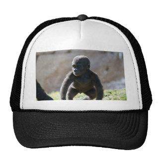 Gorila del bebé gorra