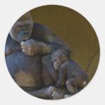Gorila del bebé pegatina