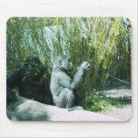Gorila del bebé tapetes de ratón