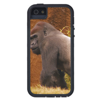 Gorila del Silverback iPhone 5 Case-Mate Protector