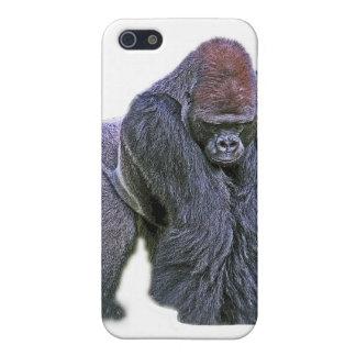 Gorila del Silverback, parte posterior del blanco  iPhone 5 Carcasas