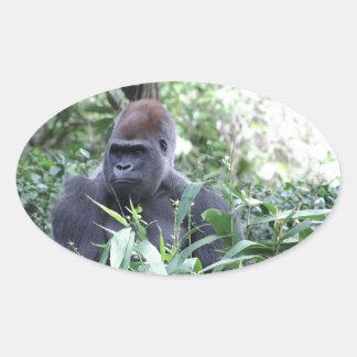gorila del silverback calcomanías de ovales personalizadas