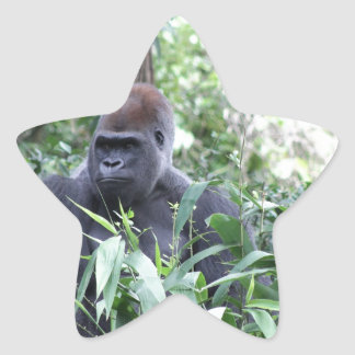 gorila del silverback calcomanías forma de estrella