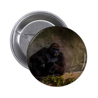 Gorila del Silverback que se relaja Pin Redondo De 2 Pulgadas