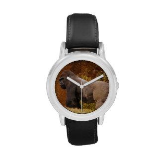 Gorila del Silverback Relojes