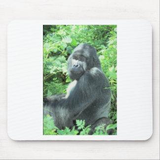 gorila del silverback alfombrillas de ratón