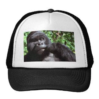 Gorila del varón del Silverback Gorras De Camionero