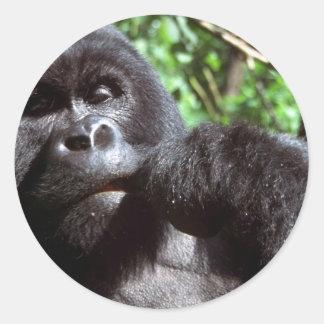 Gorila del varón del Silverback Etiqueta Redonda