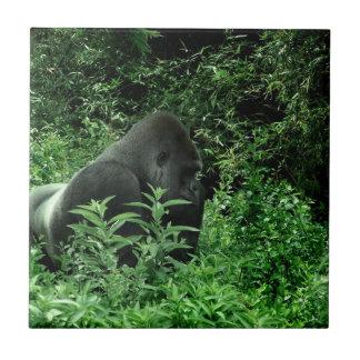 Gorila en animal verde de la fauna del tinte de la azulejo cuadrado pequeño