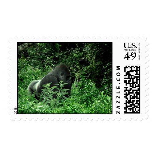 Gorila en animal verde de la fauna del tinte de sellos