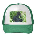 gorila en el arbusto gorras de camionero