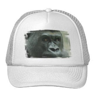 Gorila en el gorra de béisbol de la niebla