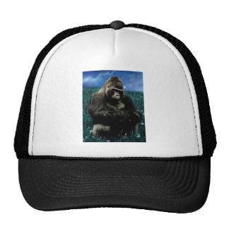 Gorila en el prado gorras
