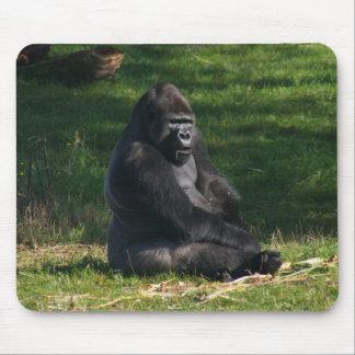Gorila en el sol alfombrillas de ratón